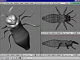 Blender screenshot of 3D moth model - body complete