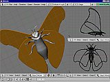 Blender screenshot of 3D moth model in progress, now with wings