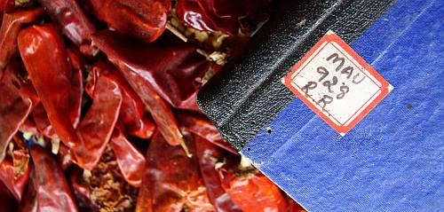 macro photo of a blue hardbound book on a bed of dried red chillies