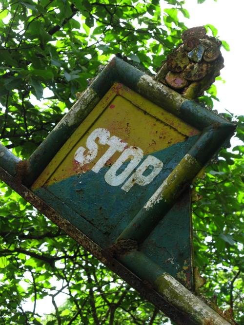 Lion stop sign - Sanjay Gandhi National Park