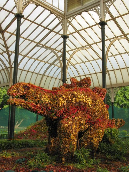 Dinosaur made of flowers at Lal Bagh