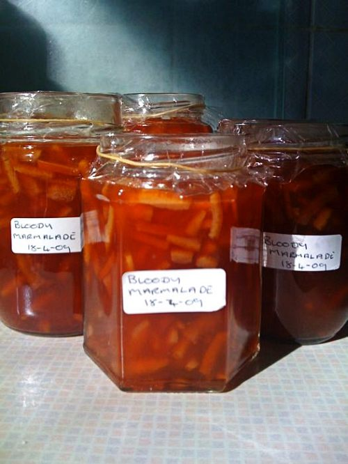 Bloody marmalade