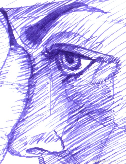 Pen Drawings - Female face detail
