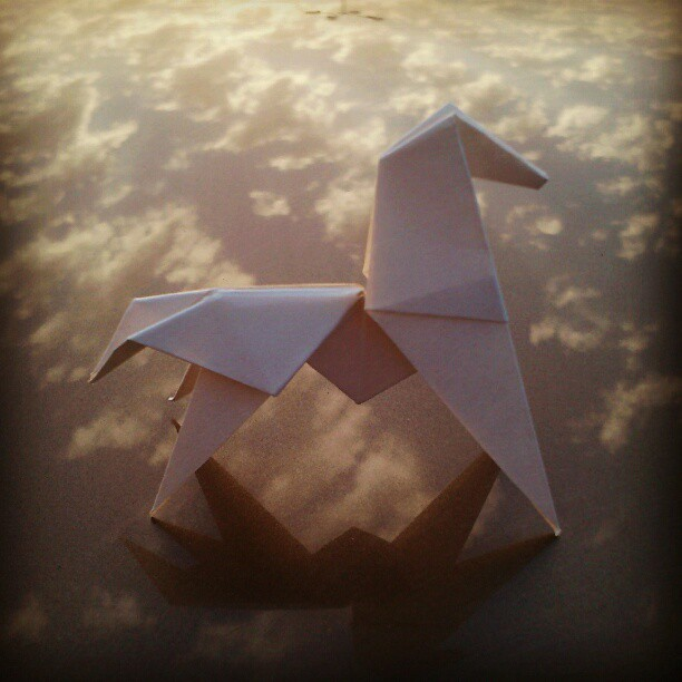 Origami horse standing on reflected clouds